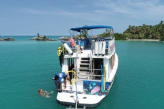 Sightseeing and Snorkel Tour
