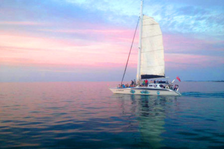 Sunset and Swizzle Catamaran Sail